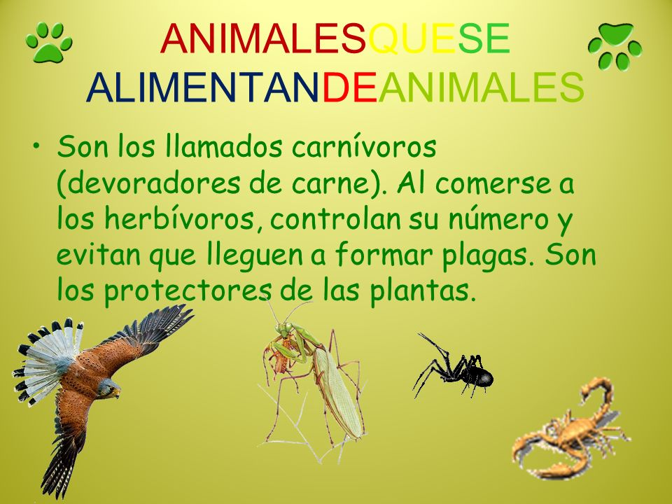 ANIMALESQUESE ALIMENTANDEANIMALES