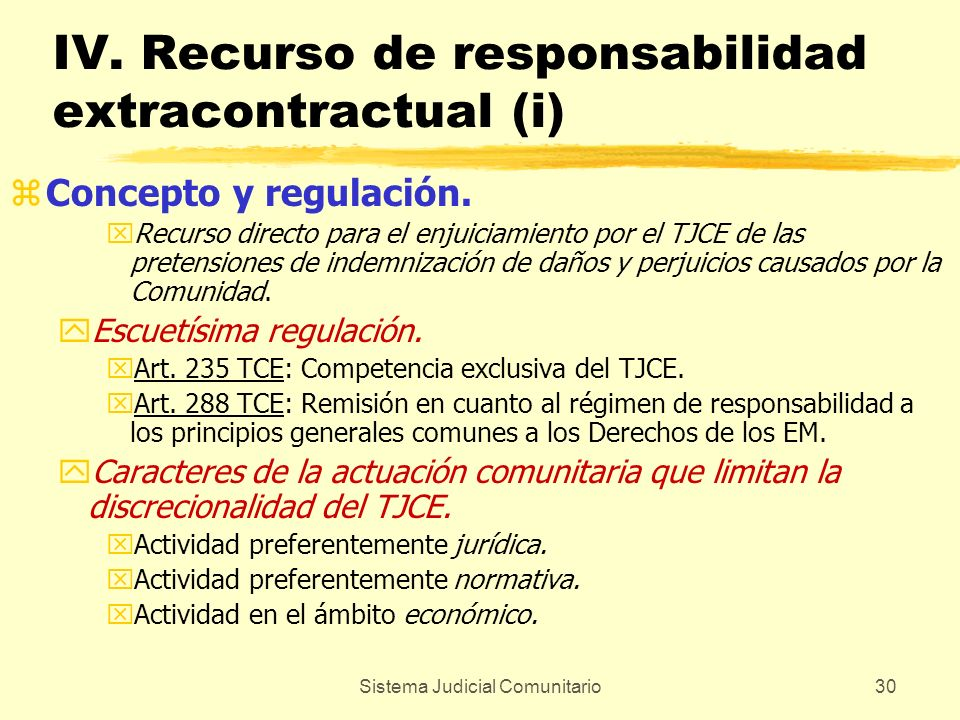 IV. Recurso de responsabilidad extracontractual (i)