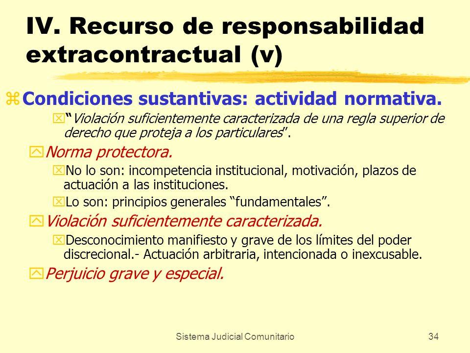 IV. Recurso de responsabilidad extracontractual (v)