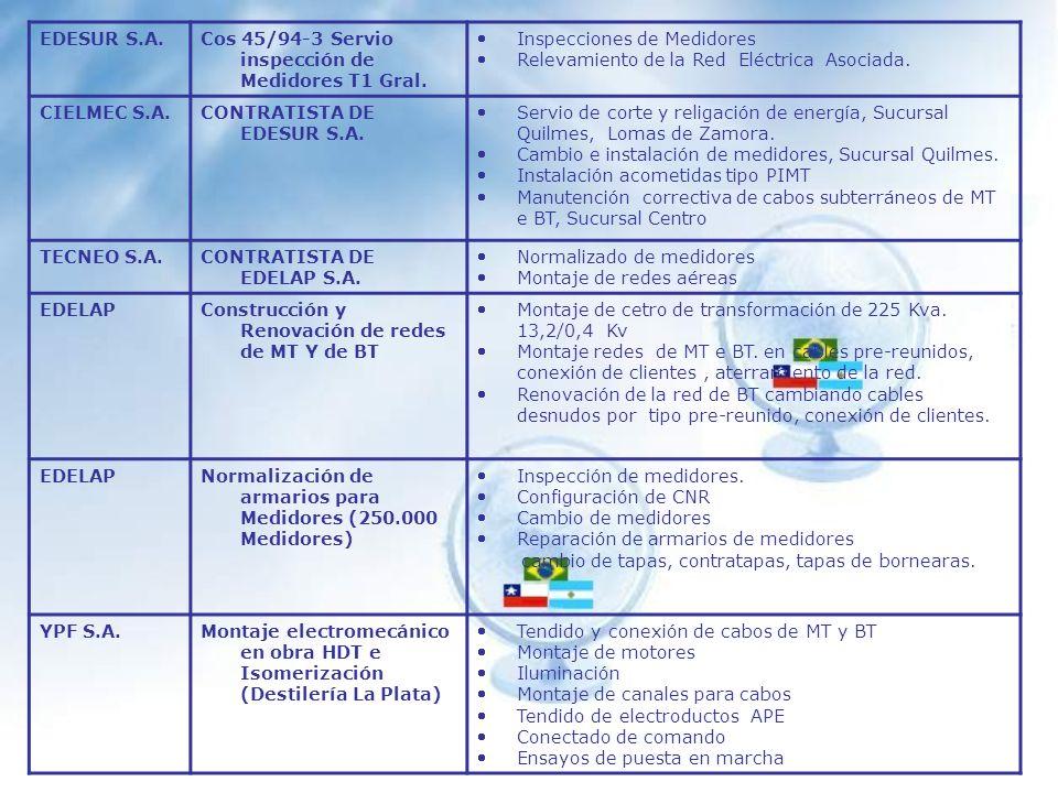 EDESUR S.A. Cos 45/94-3 Servio inspección de Medidores T1 Gral. Inspecciones de Medidores. Relevamiento de la Red Eléctrica Asociada.