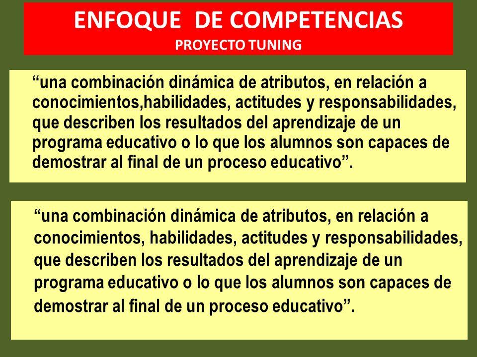 ENFOQUE DE COMPETENCIAS PROYECTO TUNING