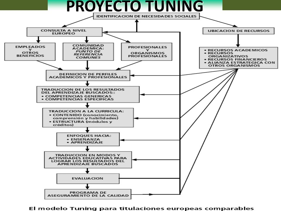 PROYECTO TUNING