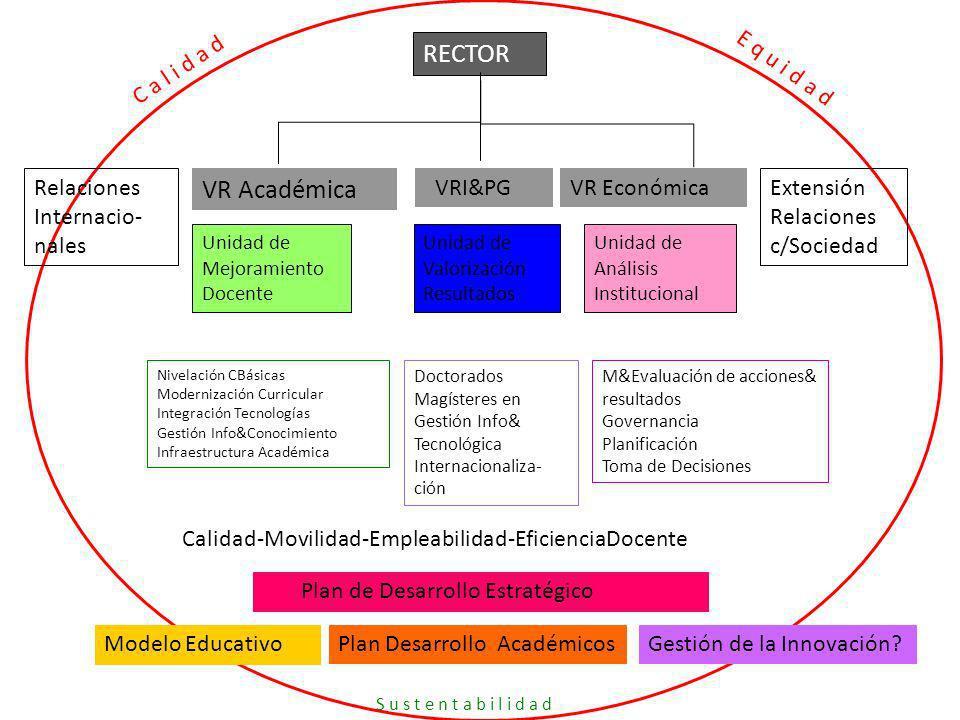 RECTOR VR Académica C a l i d a d E q u i d a d Relaciones