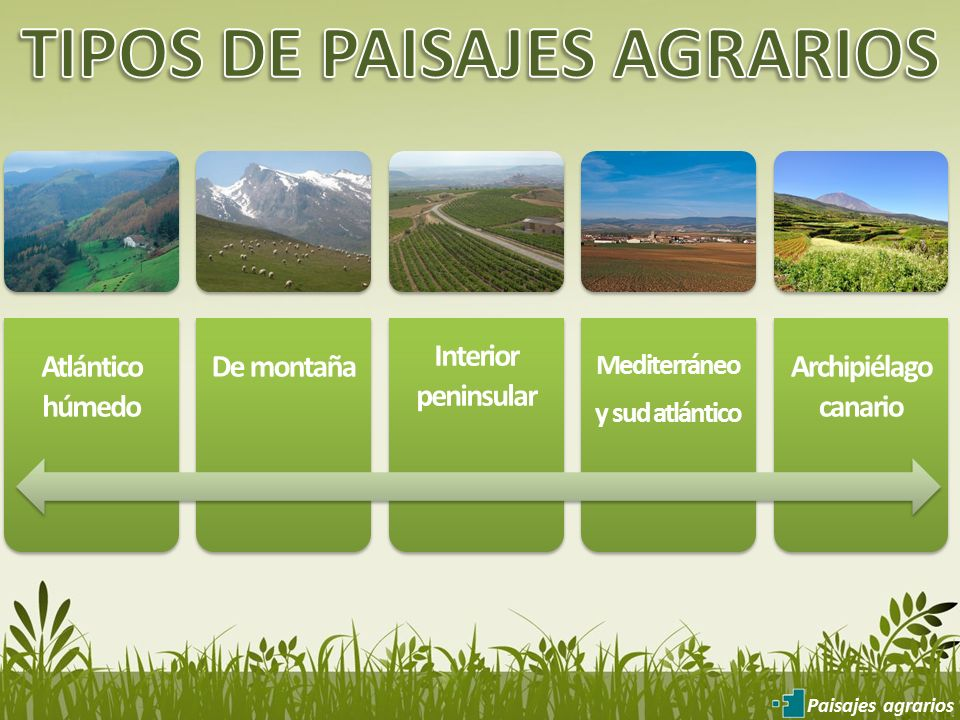 Geograf a 2 bachillerato ppt video online descargar - Tipos de paisajes ...