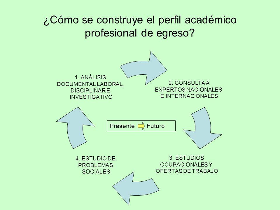 ¿Cómo se construye el perfil académico profesional de egreso