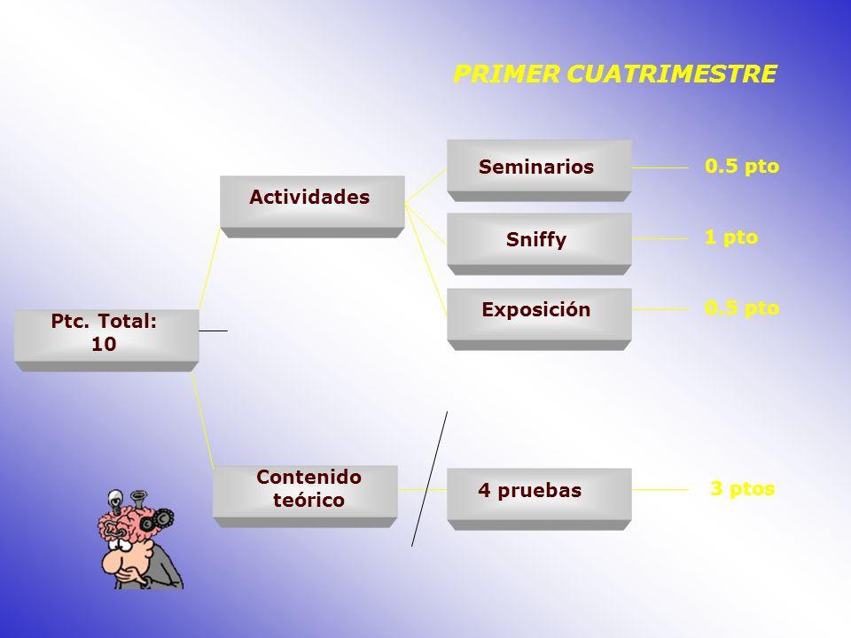 PRIMER CUATRIMESTRE 0.5 pto Seminarios Actividades 1 pto Sniffy