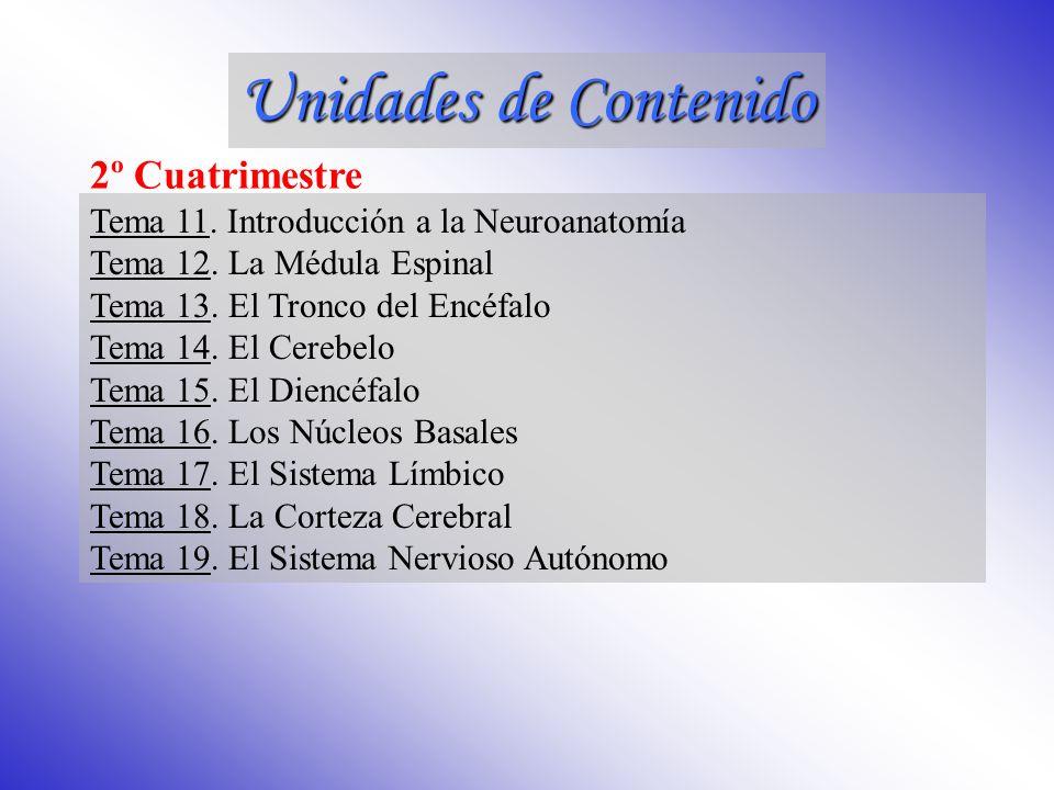 Unidades de Contenido 2º Cuatrimestre