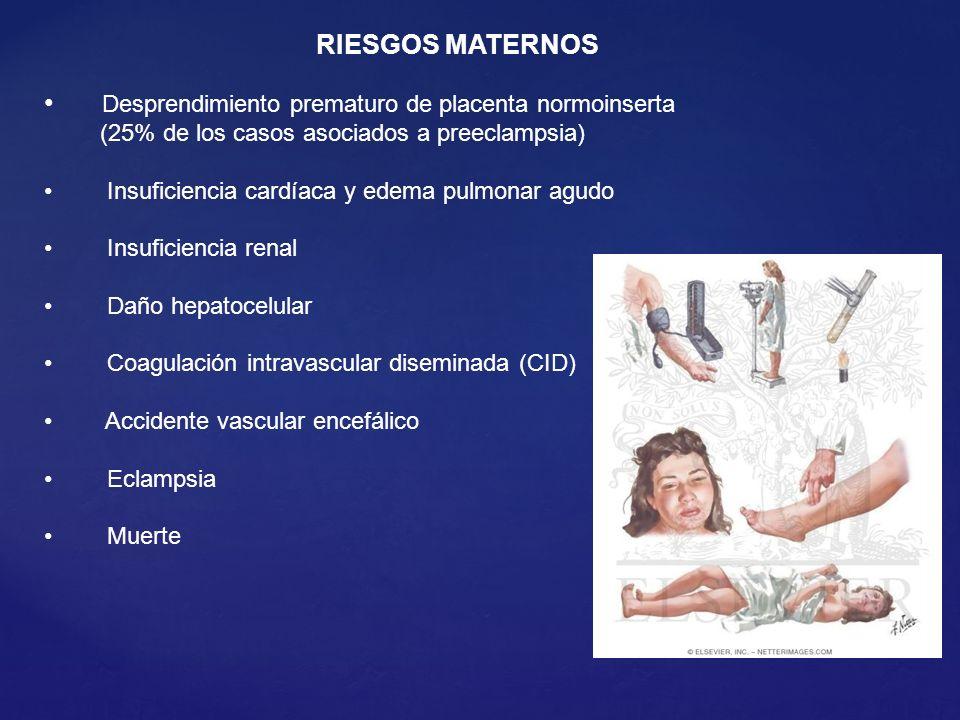 RIESGOS MATERNOS Desprendimiento prematuro de placenta normoinserta (25% de los casos asociados a preeclampsia)