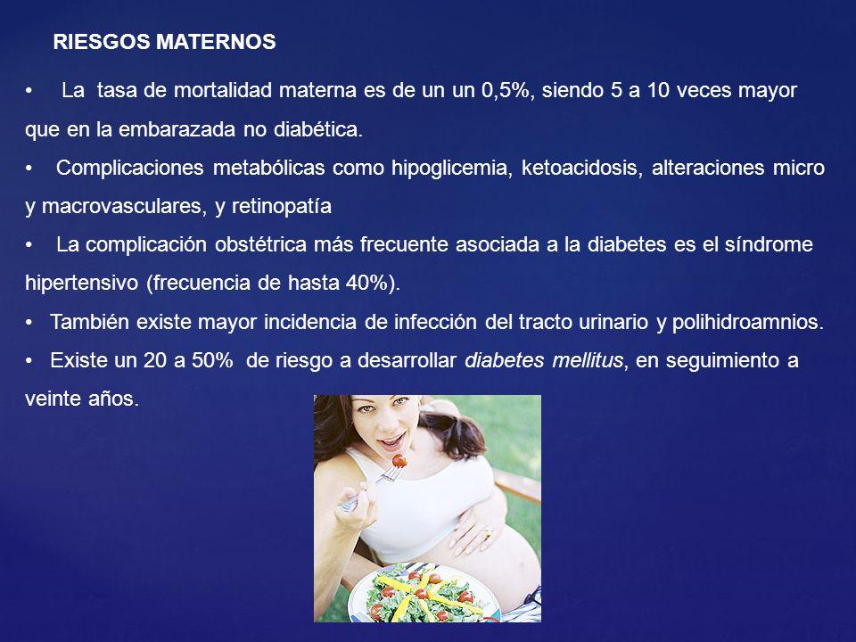 RIESGOS MATERNOS La tasa de mortalidad materna es de un un 0,5%, siendo 5 a 10 veces mayor que en la embarazada no diabética.