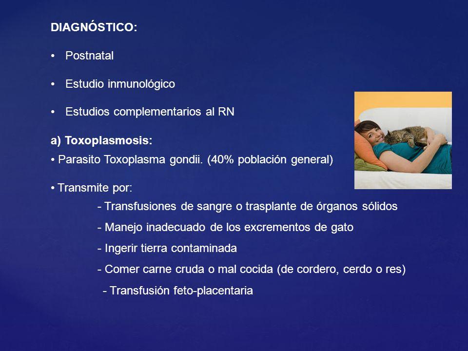 DIAGNÓSTICO: Postnatal. Estudio inmunológico. Estudios complementarios al RN. a) Toxoplasmosis: