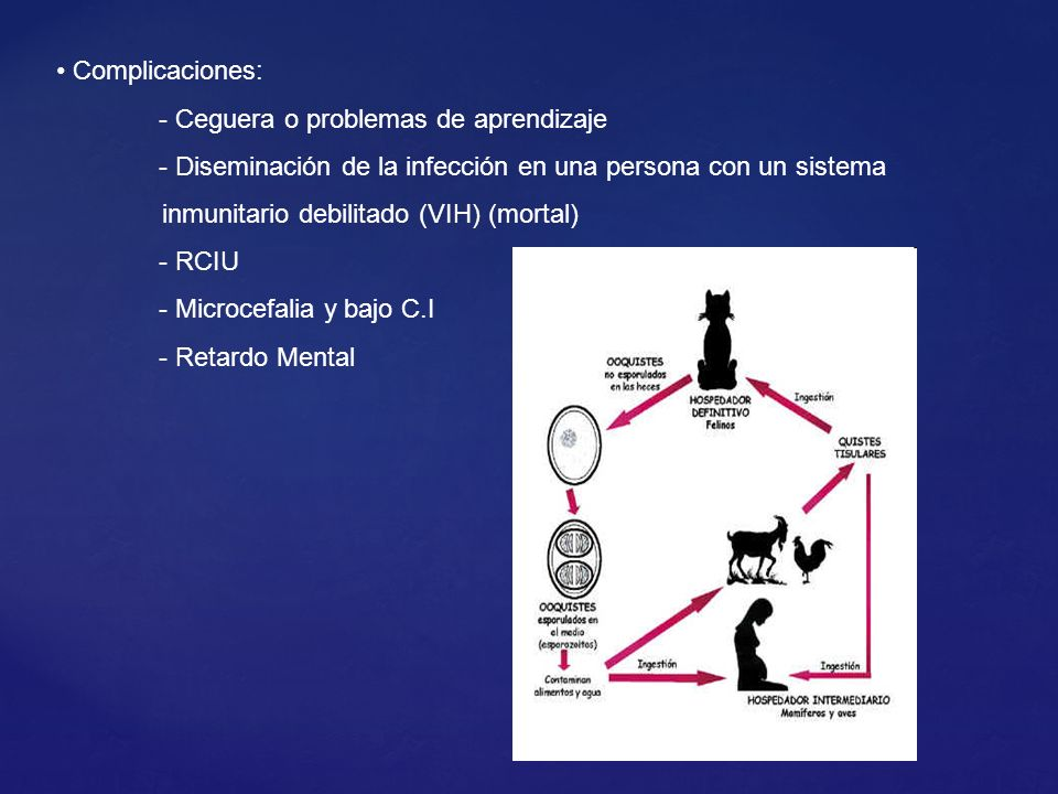 Complicaciones: - Ceguera o problemas de aprendizaje. - Diseminación de la infección en una persona con un sistema.
