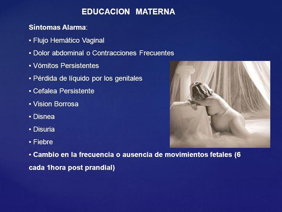 EDUCACION MATERNA Síntomas Alarma: Flujo Hemático Vaginal