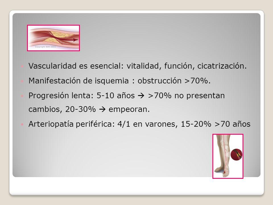 Vascularidad es esencial: vitalidad, función, cicatrización.
