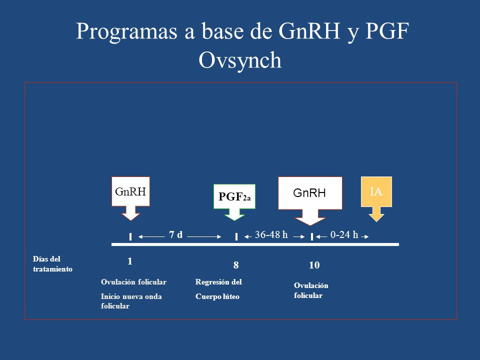 Programas a base de GnRH y PGF Ovsynch