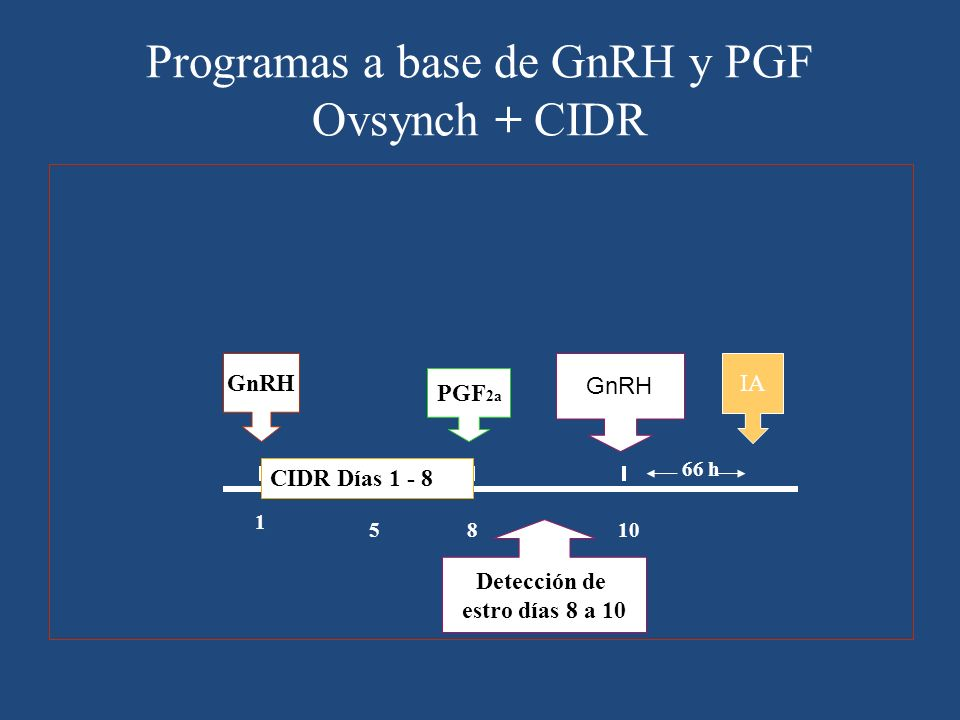 Programas a base de GnRH y PGF Ovsynch + CIDR