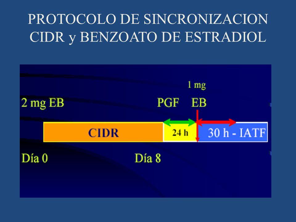 PROTOCOLO DE SINCRONIZACION CIDR y BENZOATO DE ESTRADIOL