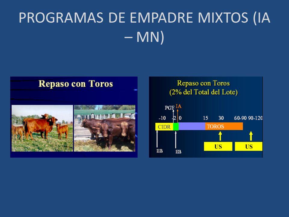 PROGRAMAS DE EMPADRE MIXTOS (IA – MN)