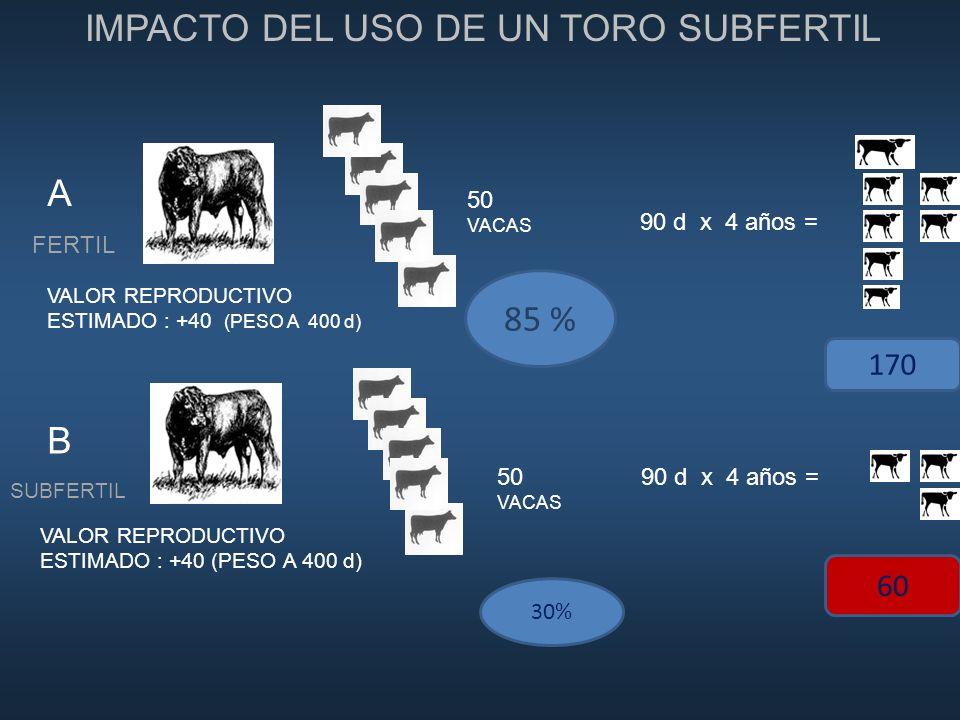 IMPACTO DEL USO DE UN TORO SUBFERTIL