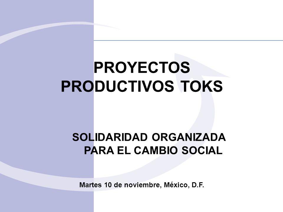 PROYECTOS PRODUCTIVOS TOKS