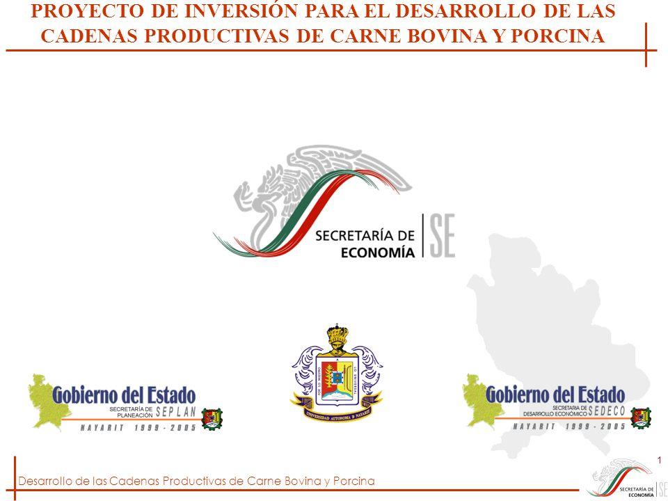 PROYECTO DE INVERSIÓN PARA EL DESARROLLO DE LAS CADENAS PRODUCTIVAS DE CARNE BOVINA Y PORCINA