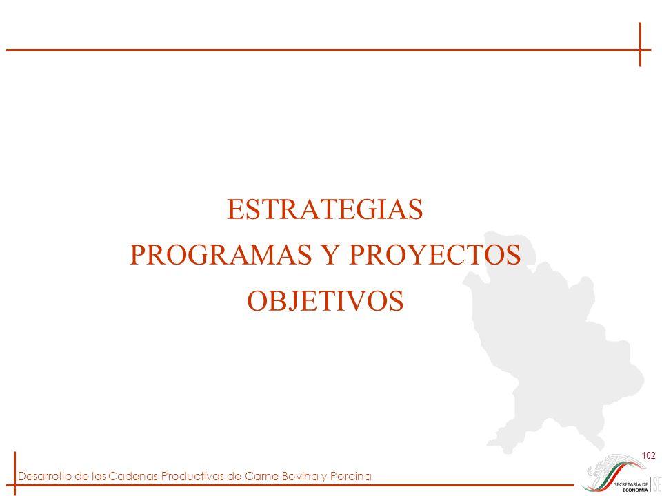 ESTRATEGIAS PROGRAMAS Y PROYECTOS OBJETIVOS