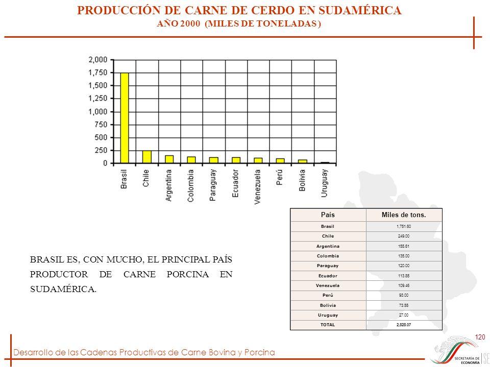 PRODUCCIÓN DE CARNE DE CERDO EN SUDAMÉRICA