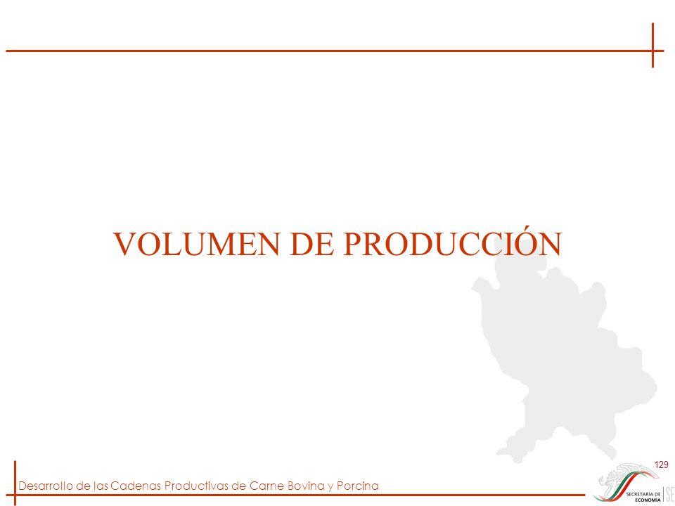 VOLUMEN DE PRODUCCIÓN