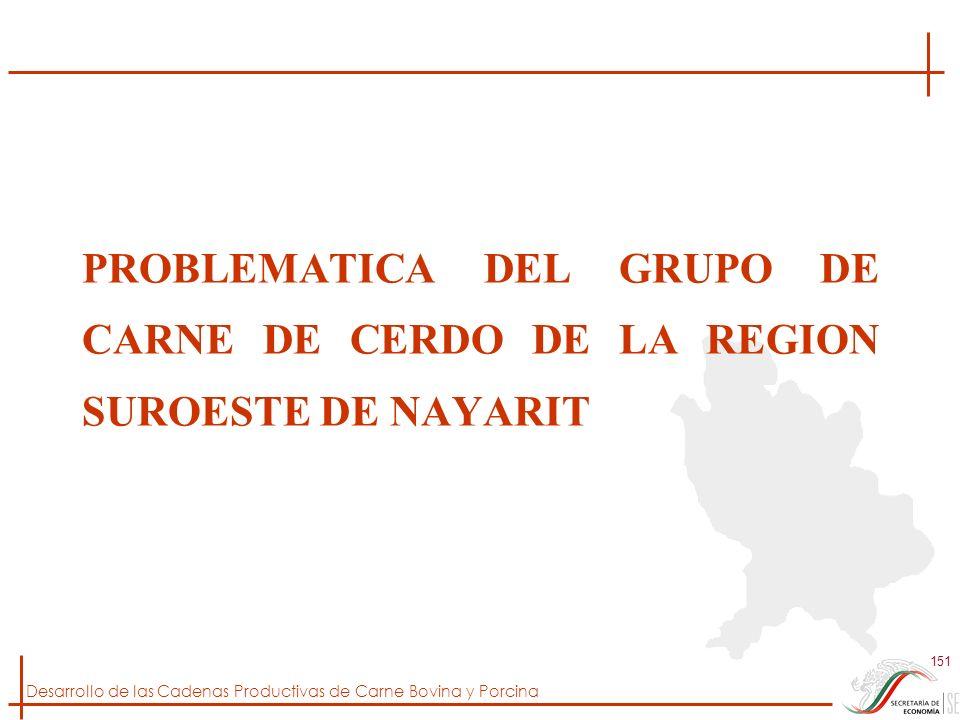 PROBLEMATICA DEL GRUPO DE CARNE DE CERDO DE LA REGION SUROESTE DE NAYARIT