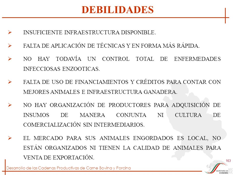 DEBILIDADES INSUFICIENTE INFRAESTRUCTURA DISPONIBLE.