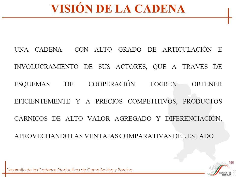 VISIÓN DE LA CADENA
