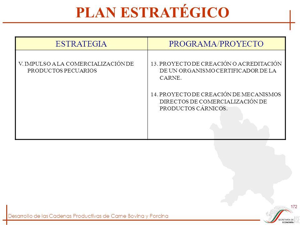PLAN ESTRATÉGICO ESTRATEGIA PROGRAMA/PROYECTO