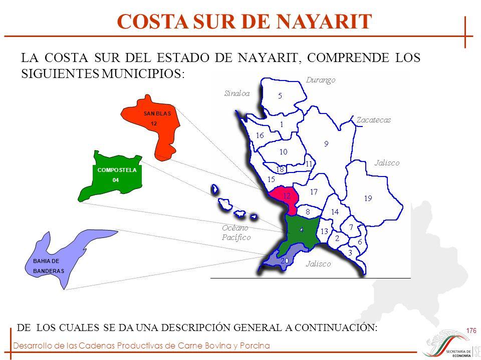 COSTA SUR DE NAYARIT LA COSTA SUR DEL ESTADO DE NAYARIT, COMPRENDE LOS SIGUIENTES MUNICIPIOS: SAN BLAS.