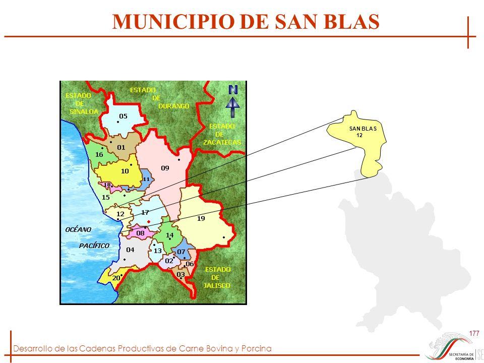 MUNICIPIO DE SAN BLAS SAN BLAS 12