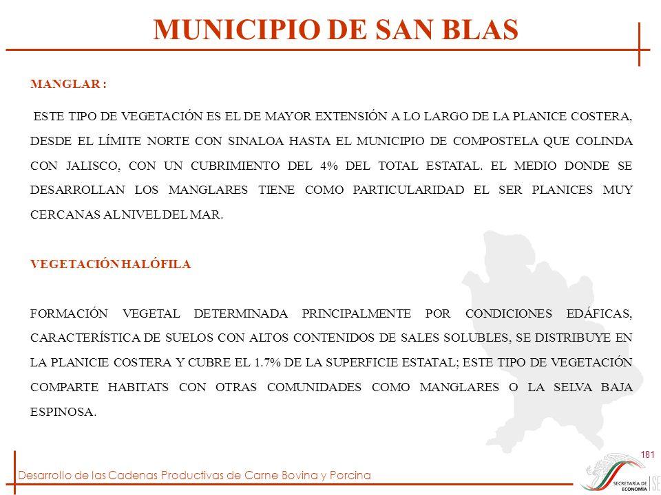 MUNICIPIO DE SAN BLAS MANGLAR :