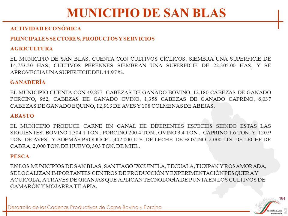 MUNICIPIO DE SAN BLAS ACTIVIDAD ECONÓMICA