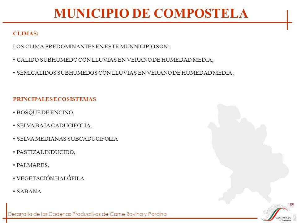 MUNICIPIO DE COMPOSTELA