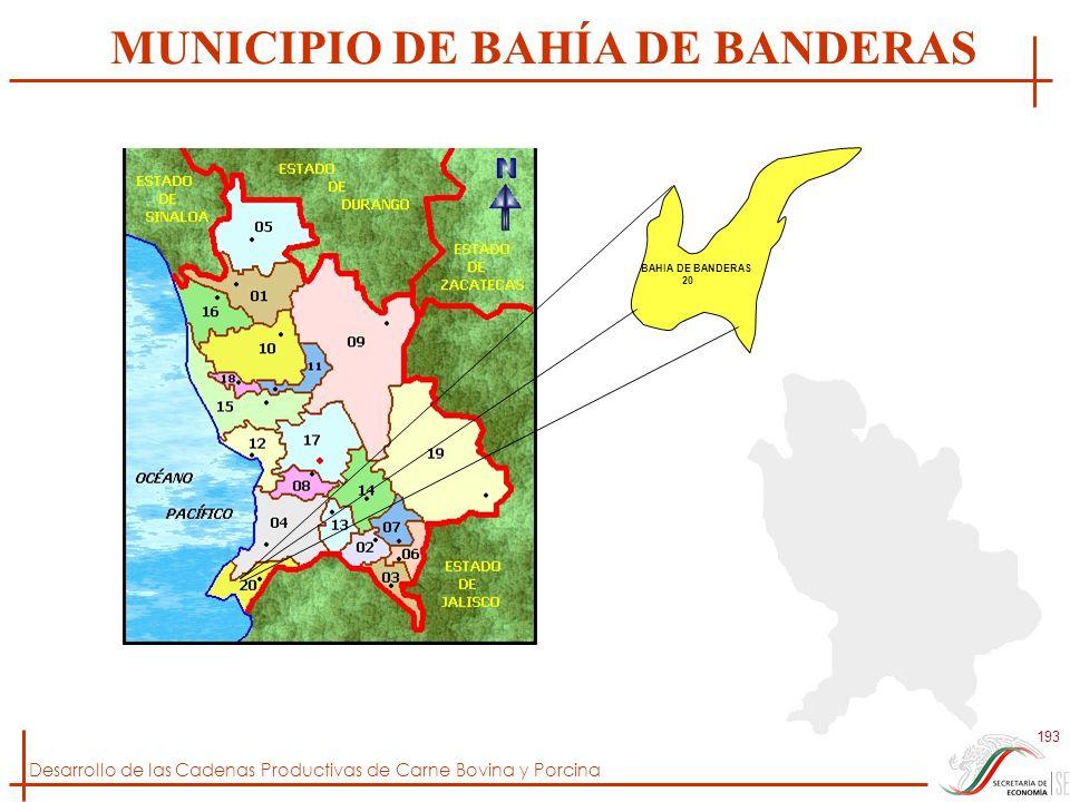 MUNICIPIO DE BAHÍA DE BANDERAS