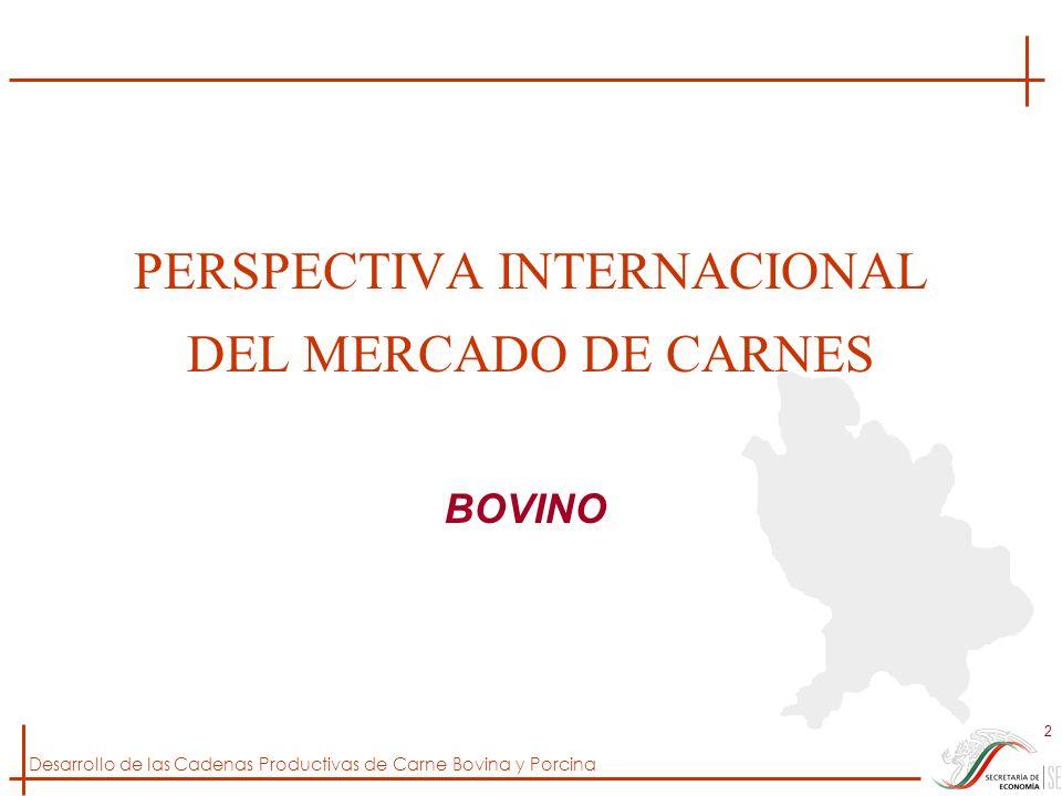 PERSPECTIVA INTERNACIONAL DEL MERCADO DE CARNES