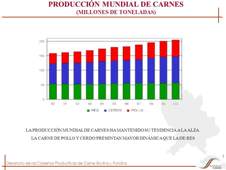 PRODUCCIÓN MUNDIAL DE CARNES (MILLONES DE TONELADAS)