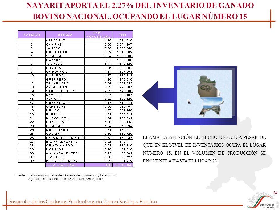 NAYARIT APORTA EL 2.27% DEL INVENTARIO DE GANADO BOVINO NACIONAL, OCUPANDO EL LUGAR NÚMERO 15