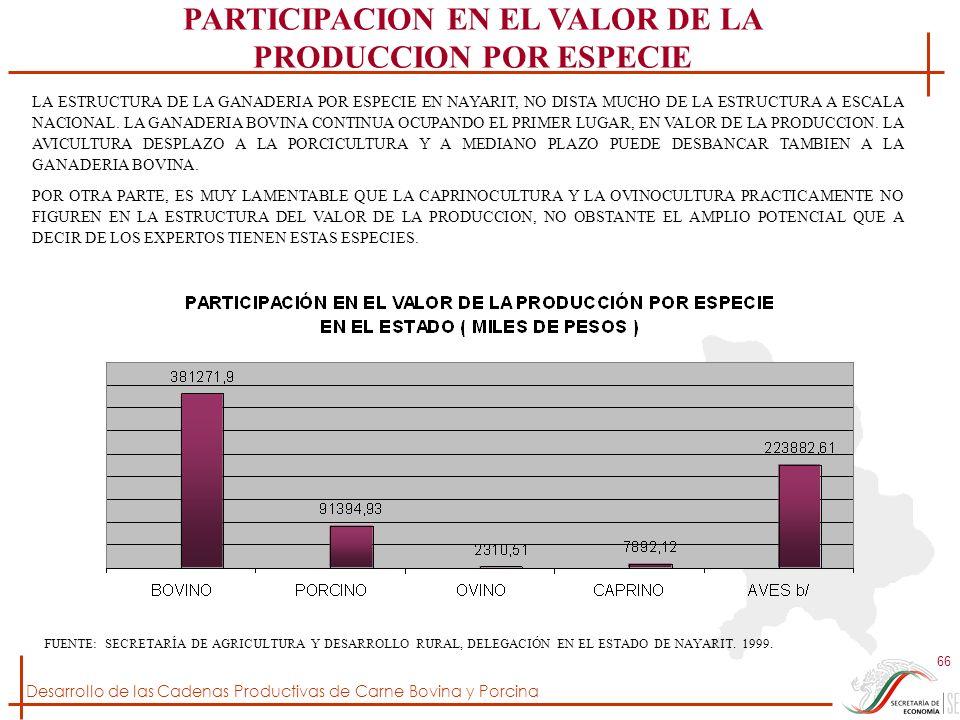 PARTICIPACION EN EL VALOR DE LA PRODUCCION POR ESPECIE