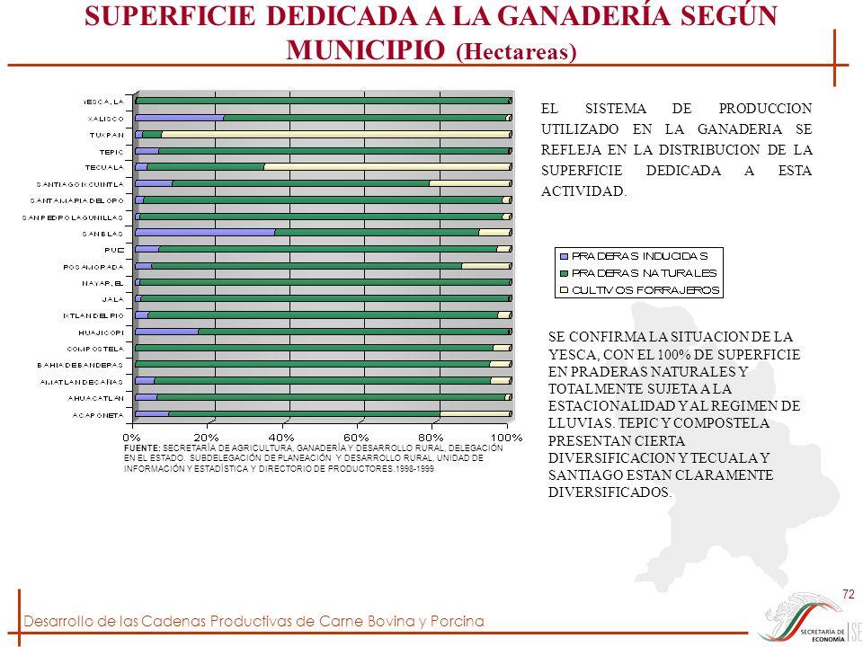 SUPERFICIE DEDICADA A LA GANADERÍA SEGÚN MUNICIPIO (Hectareas)