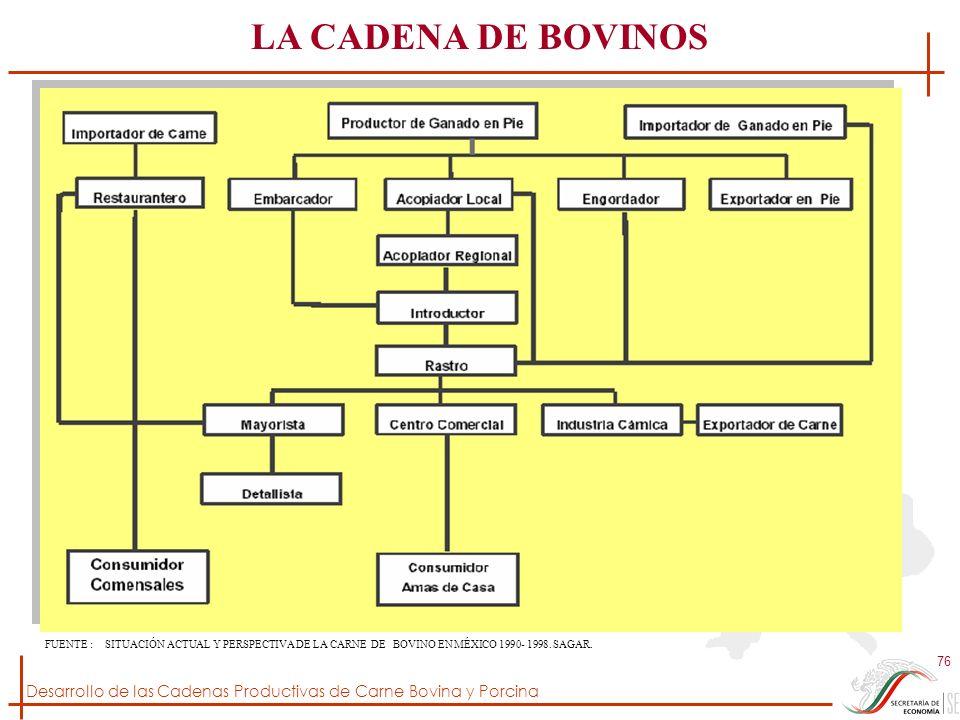 LA CADENA DE BOVINOS FUENTE : SITUACIÓN ACTUAL Y PERSPECTIVA DE LA CARNE DE BOVINO EN MÉXICO 1990- 1998.