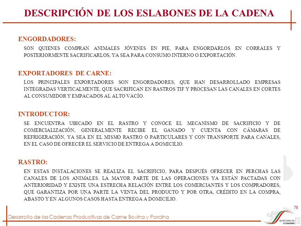 DESCRIPCIÓN DE LOS ESLABONES DE LA CADENA