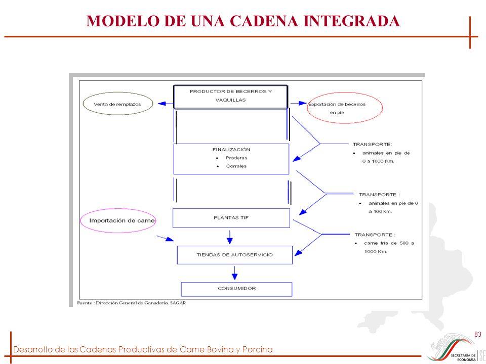 MODELO DE UNA CADENA INTEGRADA