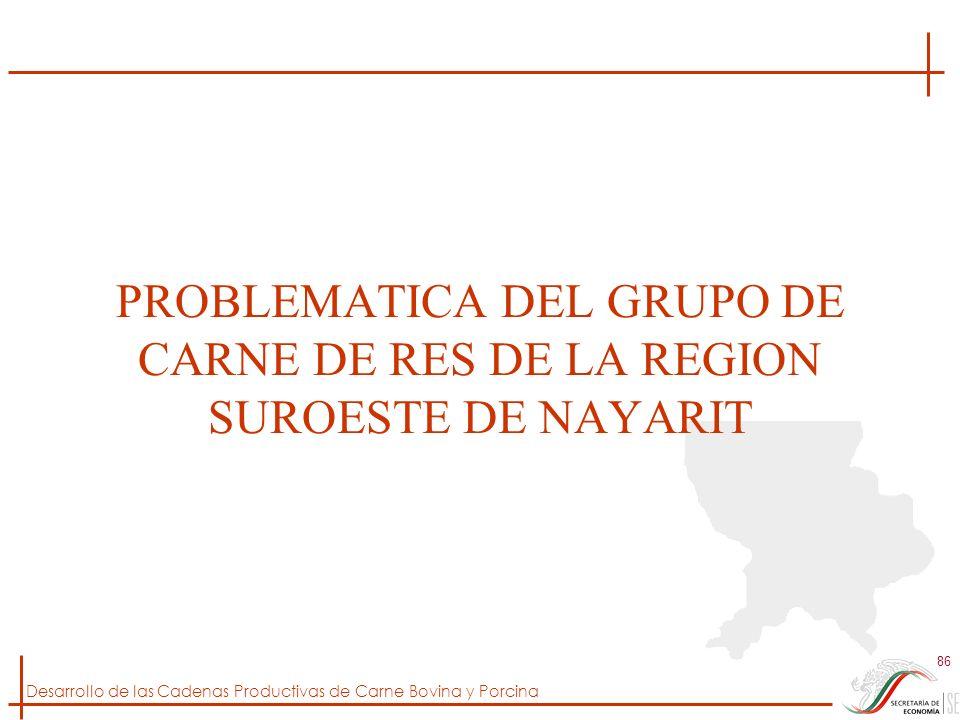 PROBLEMATICA DEL GRUPO DE CARNE DE RES DE LA REGION SUROESTE DE NAYARIT