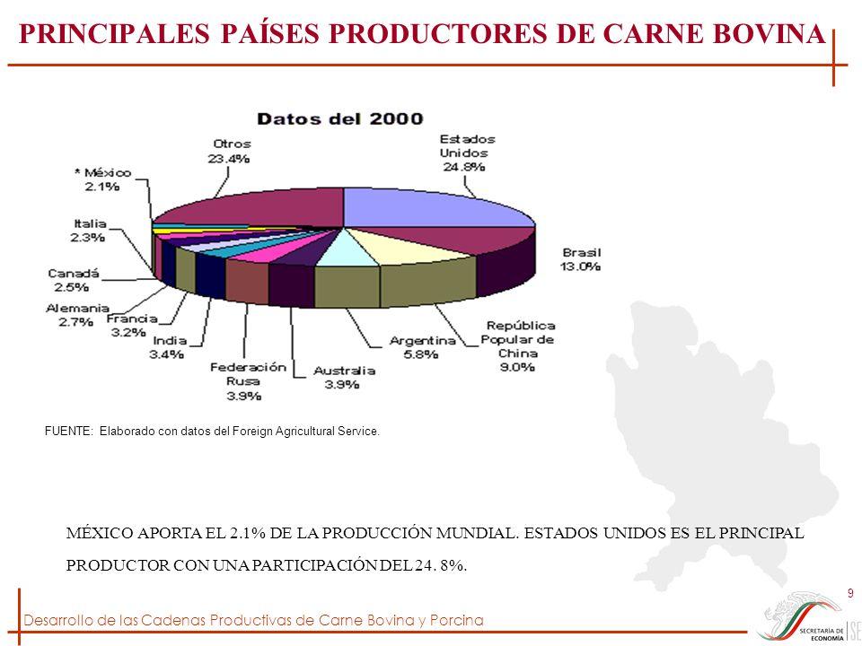 PRINCIPALES PAÍSES PRODUCTORES DE CARNE BOVINA