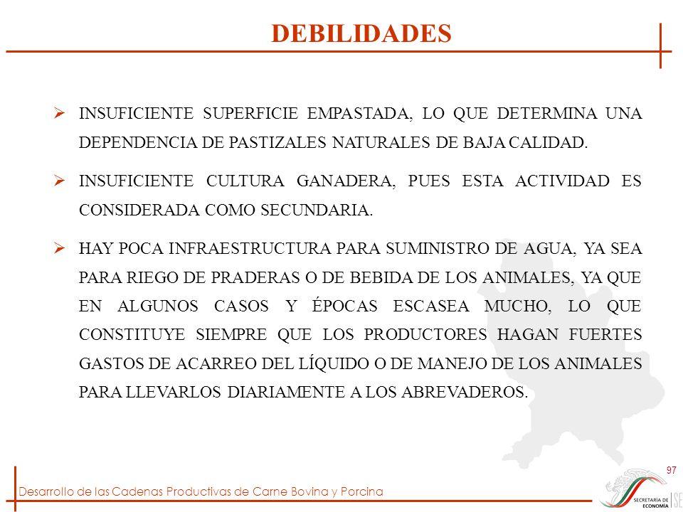 DEBILIDADES INSUFICIENTE SUPERFICIE EMPASTADA, LO QUE DETERMINA UNA DEPENDENCIA DE PASTIZALES NATURALES DE BAJA CALIDAD.