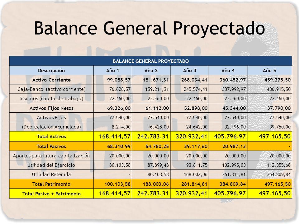 Balance General Proyectado
