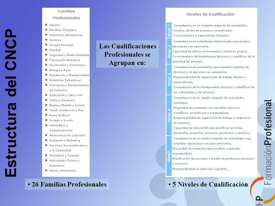 26 Familias Profesionales 5 Niveles de Cualificación